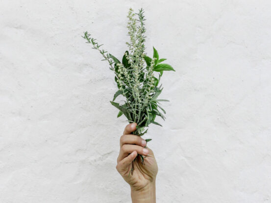 benefits of rosemary extract